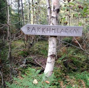 Skilta veg til Bakkhidlaren. Foto Kari Fedt Haugsbakk