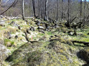 Mulig trase for vedrenne ved Stokkava