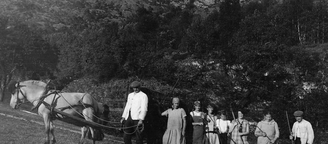 Turrhøyet må i hus. Vika-Hansen med alle rakarane. Håvikjo i Ølve, ca 1930.