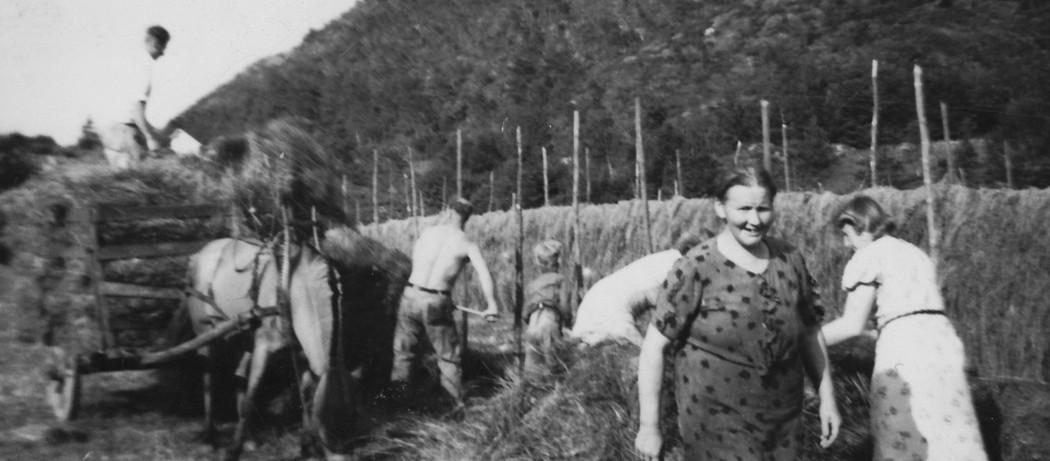 Hesjar på Saksen i Neregarden, Ølve, ca 1950.