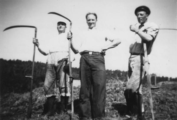 Slåttekarar i Neregarden 1945